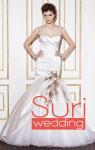 wedding-dresses-2014-enzoani-blue copy