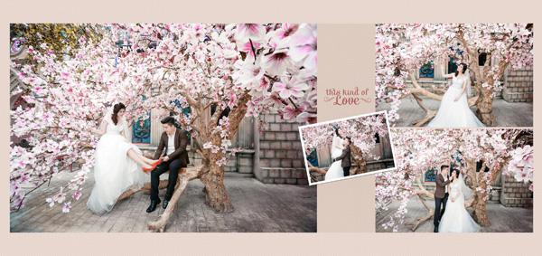 Studio áo cưới Suri